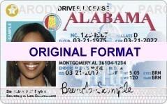 alabama Driver License Format ID Cards Designs Templates Novelty Software Card Hologram