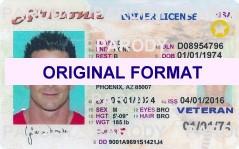 Arizona Driver License Format ID Cards Designs Templates Novelty Software Card Hologram Arizona Novelty Arizon new identity