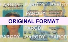 FAKE ID : Novelty Id: Fake Driver License Florida Novelty ID Card ...